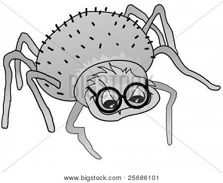 spider glasses
