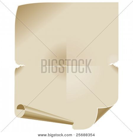 Old Paper Scroll. Background for Text messages. Vector Illustration