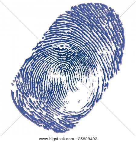 Blue ink thumbprint on white background. Vector Illustration