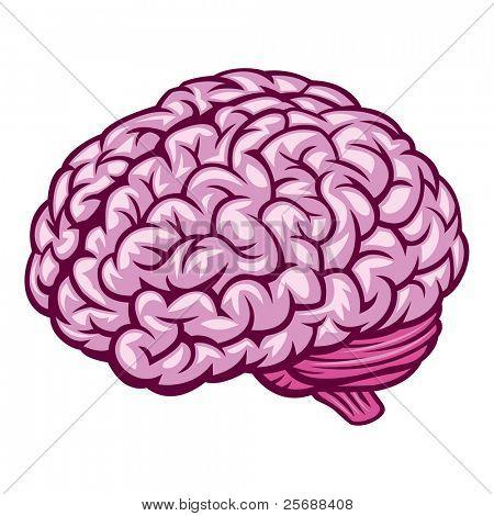 Cerebro. Ilustración de Vector