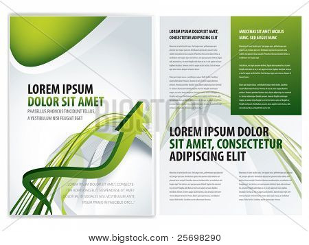 vector business brochure (booklet), flyer template