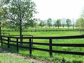 image of farm landscape  - This is a landscape showing off beautiful pastures at a farm.