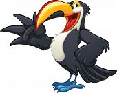 foto of toucan  - Happy cartoon toucan - JPG