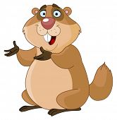 picture of gopher  - Groundhog - JPG