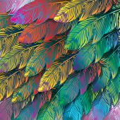 Seamless background of exotic colorful feathers, close up. Vector illustration.