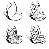 Butterfly. Vector set.