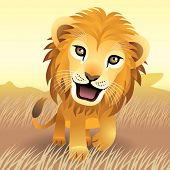 foto of baby animal  - Baby Animal collection: Lion