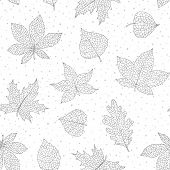 Vector Autumn Seamless Pattern With Oak, Poplar, Beech, Maple, Aspen And Horse Chestnut Leaves And P poster