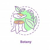 Botany Concept Icon. Science Idea Thin Line Illustration. Plant Biology. Stump, May Lily, Open Hand  poster