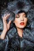 Portrait of a beautiful woman in luxurious fur coat posing in interior. Luxury, rich lifestyle. Fash poster