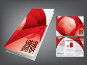 stock photo of brochure  - tri fold business brochure template - JPG
