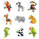Different bright jungle and safari animals
