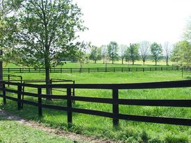 pic of farm landscape  - This is a landscape showing off beautiful pastures at a farm. ** Note: Slight blurriness, best at smaller sizes - JPG