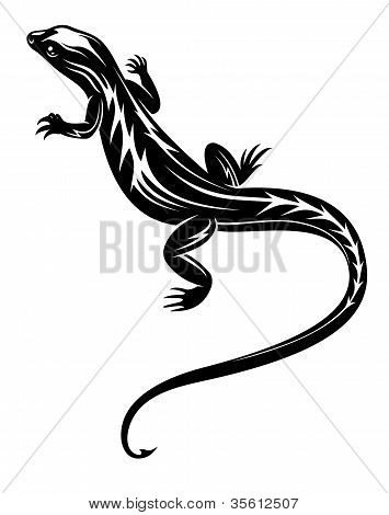 Black Lizard Reptile