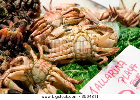 Live Crabs On Market Stall