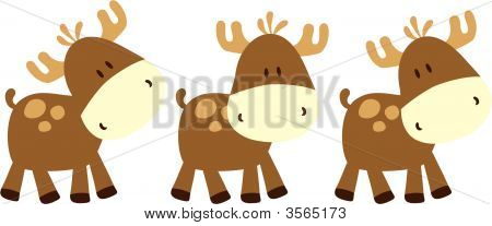 Baby Deers