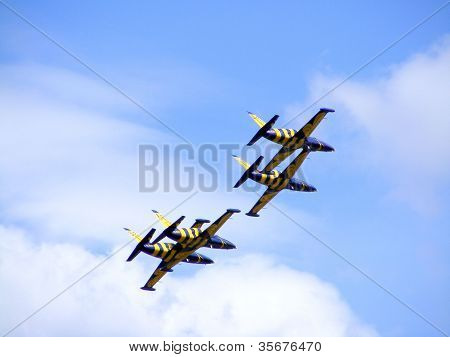 The Latvian Aerobatic Display Team The Baltic Bees
