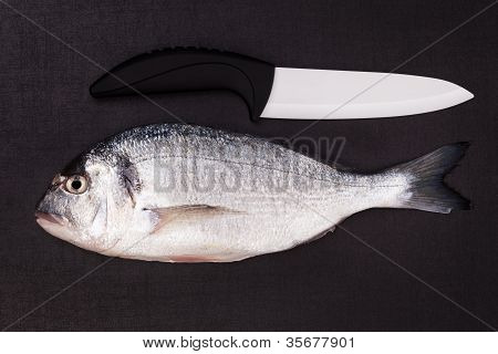 Sea Bream With Ceramic Knife Isolated. Top View.