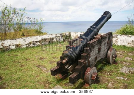 Cannon Facing Pacific Ocean