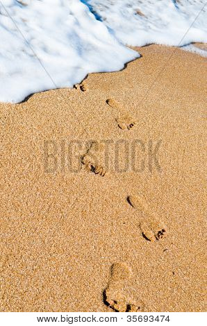 Traces on sand. Ocean