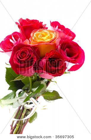 Hermosas rosas rojas