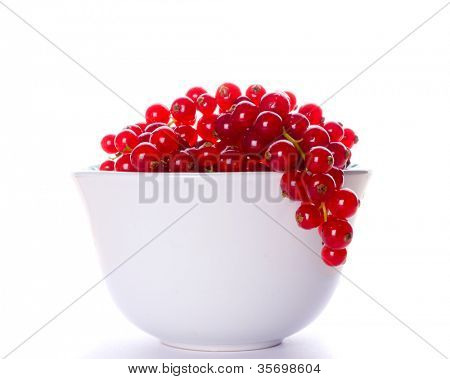 Red currant in cup. Isolation on the white