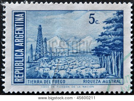 shows the Tierra del Fuego Province and flock of sheep