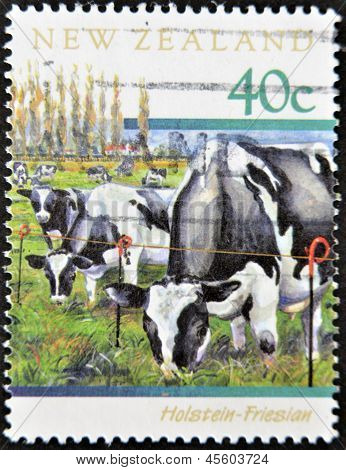 A stamp printed in New Zealand shows cattle grazing Holstein - Friesian