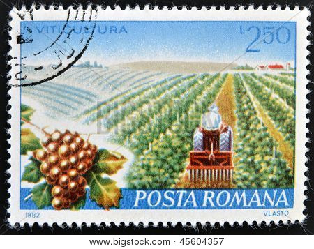 A stamp printed in Romania dedicated to viticulture