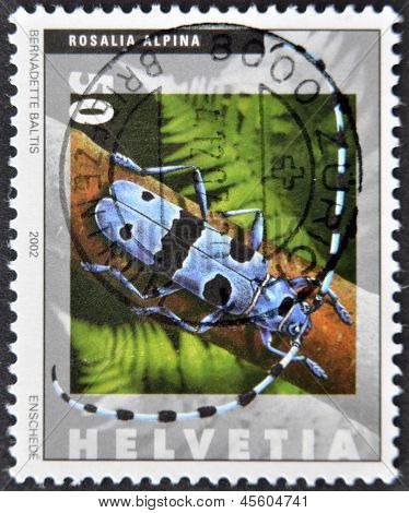 SWITZERLAND - CIRCA 2002: A stamp printed in Switzerland shows rosalia alpina circa 2002
