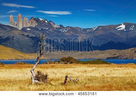 Torres del Paine Nationalpark, Laguna Azul, Patagonien, Chile