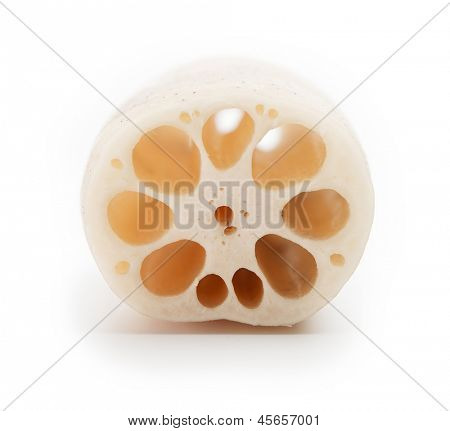 Lotus root (Nelumbo nucifera), or Renkon, isolated on white, with characteristic hole patterns showing on the cross section.