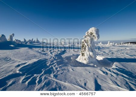 Landscape - Winter Mountains