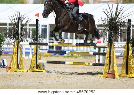 MOSCOW - JUN 17: Athlete participate in horse competitions on tournament on modern pentathlon - Kremlin Cup in horse-racing centre of CSKA, on Jun 17, 2012 in Moscow, Russia.
