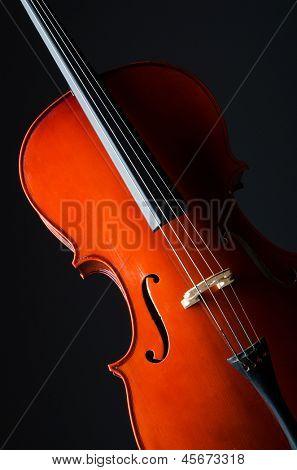 Violin on the black background