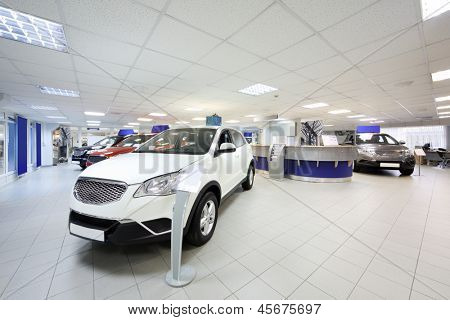 New shining beautiful cars stand near desk reception in car shop.