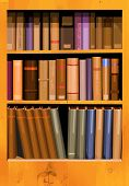 picture of book-shelf  - A collection of books in a bookcase in vector format - JPG