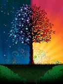picture of night-blooming  - Day and night tree  - JPG