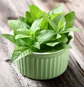 image of peppermint  - Peppermint - JPG