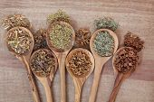 stock photo of naturopathy  - Herb selection for alternative health remedies in olive wood spoons over papyrus background - JPG