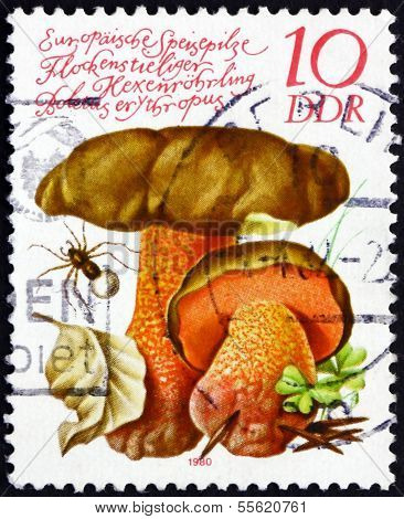 Postage Stamp Gdr 1980 Dotted Stem Bolete, Edible Mushroom