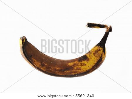 Rotten banana isolated.