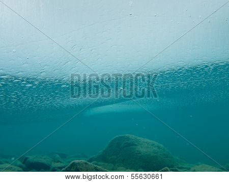Frozen Lake Ice Sheet Underwater Rocks