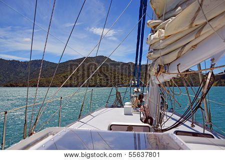 Sailing On The Marlborough Sounds, New Zealand