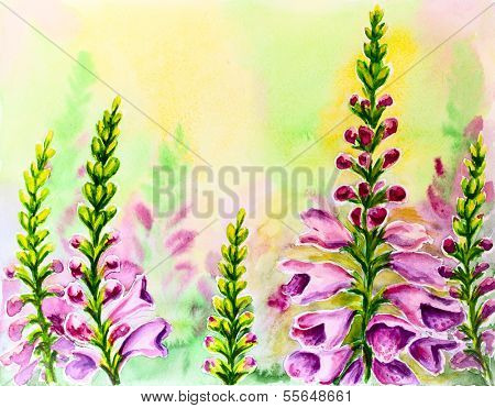 Foxglove flowers, oil painting on canvas