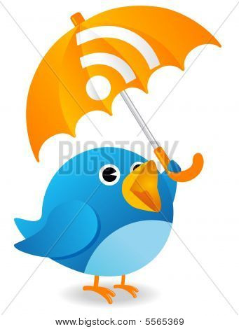 Rss Bird
