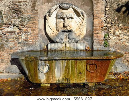 Fountain Mask