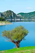 foto of apennines  - Wooded Shore of the Lake in Italy - JPG