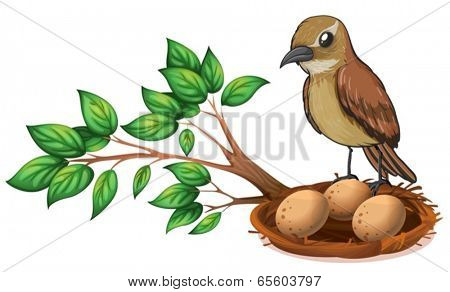 Illustration of a bird at the branch of a tree watching the nest on a white background