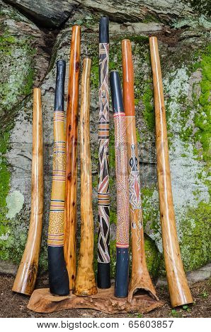 A Collection of Traditional Termite Hollowed, and Handmade Didgeridoo's.